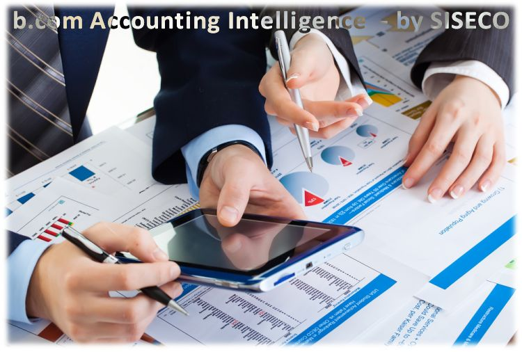 siseco accounting intelligence1 Intelligent Accounting, grazie a b.com